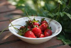 Strawberry (sergtrav) Tags: strawberry plate