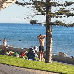 afternoon delight (badjonni) Tags: public candid shirtless guy dude outdoor beach male