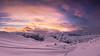 Dolomites' vibrancy II (Ettore Trevisiol) Tags: ettore trevisiol nikon d7200 d300 friuli tree sunset blue hour goldenhour dolomiti snow cortina dolimites winter