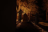 Praying (MIKAEL82KARLSSON) Tags: kyrka church nightshot nightphoto night munk monk kyrkogård graveyard be praying nattfoto natt light pentax k70 1650mm f28 mikael82karlsson werd old gammal