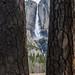 Yosemite Falls in a natural frame