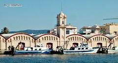 Puerto pesquero. GANDIA  🇪🇸 (José Hijano Comino) Tags: hpphotpsmart735 ©josehico gandia puertopesquero valencia