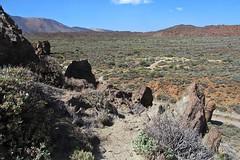 volcanic landscape :) (green_lover) Tags: landscape rocks teidenationalpark tenerife canaryislands spain unesco travels