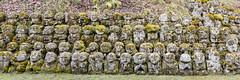Rakans (GavinZ) Tags: asia japan kyoto travel otaginenbustuji temple statues rakan buddhist religion 愛宕念仏寺