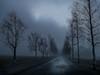 Foggy Road (Topolino70) Tags: huawei p20 pro moble mist fog road birch field sky