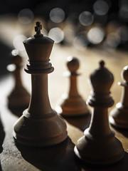 The King (Diego Epstein) Tags: chess ajedrez king rey alfil bishop macro bokeh nikon d600 tamron 2875mm