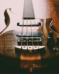 Alembic Essence (R. Henne) Tags: alembic bassguitar