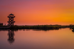 Lookout Tower Disk - Robinsons Preserve (Cracked_Lens) Tags: tower sunset dusk sunlight floridasunset colorful colors color sky skyart skyonfire floridasky floridatrail floridahiking floridanature florida floridapreserve hikingphotography hikingtrail hiking hikingphotos
