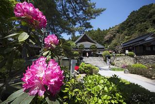 Rurikoji Temple, Yamaguchi