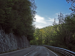 18050718750valtrebbia (coundown) Tags: gita tour statale stradastatale 45 ss45 valtrebbia trebbia natura boschi verde fiume