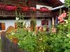 Typical bavarian house (libra1054) Tags: häuser casas case maisons houses bavaria baviera baviêre bayern