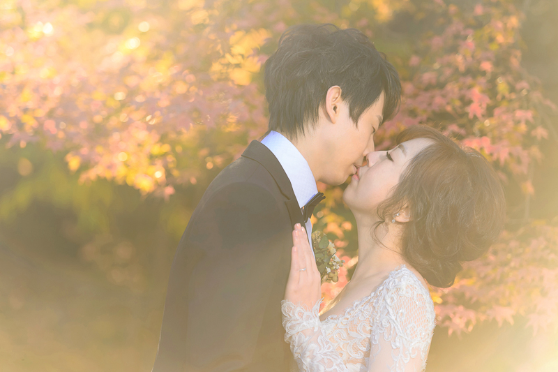 cheri婚紗包套,日本婚紗,京都婚紗,楓葉婚紗,JH florist,新祕巴洛克,婚攝,MSC_0063