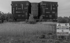 Rushes (harrytaylor6) Tags: blackandwhite blackwhite monochrome rushes pond water trees office building windows glass grass