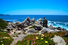 Cypress Point Lookout - 17-Mile-Drive - California (TravelMichi) Tags: californa california travel usa2018 delmonteforest usa us