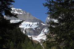Les Muverans (bulbocode909) Tags: valais suisse muverans montagnes nature neige printemps paysages arbres forêts mélèzes sapins vert bleu ovronnaz