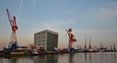 Huisman Equipment Schiedam (Hugo Sluimer) Tags: portofrotterdam port haven nlrtm zuidholland nederland holland onzehaven