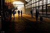 Waiting for the train (Greet N.) Tags: railwaystation platform architecture building travel passengers haarlem