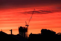 Sunrise looking east (Leon Sammartino) Tags: cranes silhouette fujifilm 18135 fujinon red xe3 sunrise