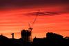 Sunrise looking east (Leon Sammartino) Tags: cranes silhouette fujifilm 18135 fujinon red xe3 sunrise