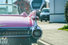 1959 Cadillac Eldorado Biarritz Convertible (aguswiss1) Tags: cabrio flickrcar dreamcar switzerland uscar carlover flickr carheaven auto carspotting eldorado hillclimb biarritz carswithoutlimits classiccar cabriolet cadillac caroftheday car carporn
