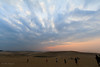Tottori Sand Dune at dusk / 鳥取砂丘夕景 (yanoks48) Tags: tottori 鳥取 japan 日本 tottorisanddune 鳥取砂丘 evening 夕景 seaofjapan 日本海