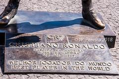 Praça CR7, Funchal (W. Pereira) Tags: brasil brazil sampa sãopaulo wpereira wanderleypereira avdomar cr7 cristianoronaldo europa funchal ilhadamadeira madeiraisland nikon portugal velhocontinente wpereiraafotografias wanderleypereirafotografias