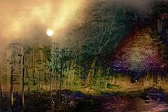 mani-479 (Pierre-Plante) Tags: art digital abstract manipulation painting