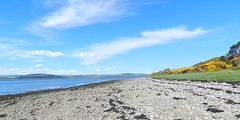 Alturlie Bay, near Inverness, May 2018 (allanmaciver) Tags: alturlie inverness stone clouds blue sky weather sun warm enjoy walk low view seaweed allanmaciver highlands scotland