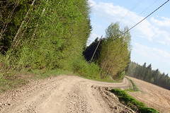 My point of view (talaakso) Tags: erkylä finland hausjärvi kevät olympus olympustoughtg5 olympustg5 tg5 toughtg5 terolaaksospring colours dusty dustyroad metsäautotie pölyinen pölyinentie road springcolors talaakso
