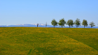 Le Feldberg (Alt : 1493m)