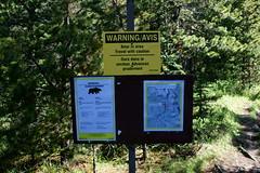 OpalHiills00014 (jahNorr) Tags: summertrip 2012 canadaalbertajaspernationalparkopalhills