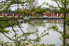 Reflection (Maria Eklind) Tags: countryside framed reflection spegling österlen water smygehuk sweden skåne vatten skånelän sverige se
