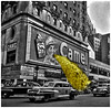 18 April 1956: The day the Claridge Hotel in Times Square replaced customary smoke with septic tank sewage, wreaking havoc among New York City denizens and tourists who were viewing the famous cigarette billboard. (Fotofricassee) Tags: cigarette smoke sewage manhattan new york times square camel