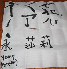 IMG_0596 (sally_byler) Tags: calligraphy chinese language drawing characters alphabet ink brush paper mandarin