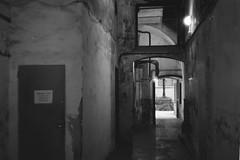 Hallway (davidgarciadorado) Tags: ngc architecture city urban born barcelona spain blackandwhite 35mm film helios 103 kiev ilford rangefinder dark street yard hall