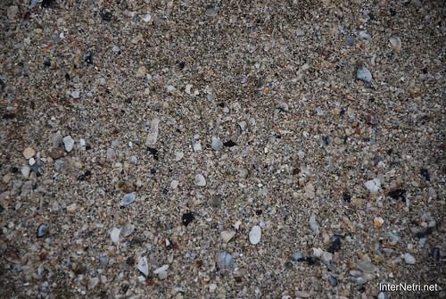 Ріміні  Пляж і Адріатичне море InterNetri Італія 2011 109