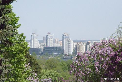 Сад бузків Ботанічний сад імені Гришка InterNetri  Ukraine 07