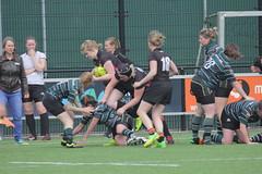 LadyBears-PWPL_007 (J van Dehn) Tags: wrugby rugby rugbyclubgroningen groningen rugbyunion ladybears 15srugby