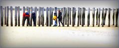 La plage et la mer du Nord à Dombourg, Walcheren, Zeelande, Nederland (claude lina) Tags: claudelina nederland paysbas hollande zeeland zélande dombourg domburg plage beach dunes mer sea merdunord noordzee piquets poteaux