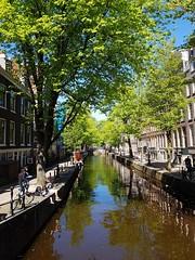 Amsterdam... (Antónia Lobato) Tags: amesterdão amesterdam sunny
