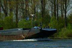 MS PHILOS (Lutz Blohm) Tags: msphilos speyer schubverband schüttgutfrachter binnenschiffe gütermotorschiff binnenschifffahrt rheinschifffahrt rhein sonyalpha7aii fe70300goss fluskilometer399