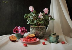 Smile Anyway (Esther Spektor - Thanks for 12+millions views..) Tags: stilllife naturemorte bodegon naturezamorta stilleben naturamorta composition creativephotography art spring tabletop flowers cyclamen geranium plant pot fruit berry plum raspberry figurine frog plate bowl curtain ceramics pattern ambientlight white green pink red burgundy teal yellow black estherspektor canon
