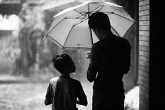 A Tale Of Two Brothers (N A Y E E M) Tags: sameer imran brothers umbrella rain monsoon afternoon home rabiarahmanlane chittagong bangladesh