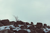 Mallorn (castillobg) Tags: chile torres paine winter invierno rocks snow nieve canon travel photography fotografía wanderlust viaje suramérica south america