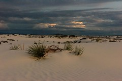 Evening Glow (CloudRipR) Tags: whitesanddunesnationalmonument yucca sand clouds storm sunset newmexico dunes nikon nikkor d810