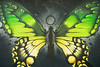 Butterflies Instead (prozla) Tags: tübingen badenwürttemberg deutschland de butterfly schmetterling graffiti graffito street art