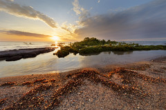 As the sun sets (Louise Denton) Tags: darwin nt northernterritory australia beach coast longexposure sunset colour light eastpoint leaves island mangroves