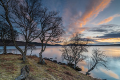 Sunset Silhouettes .. (Gordie Broon.) Tags: sunset lochduntelchaig scottishhighlands scotland caledonia schottland natural reservoir invernessshire ecosse paysage landscape trees lac paisaje escocia scenery lago lecoucherdusoleil atardecer scenic silhouettes april 2018 landschaft scozia inverness bunachton sonnenuntergang gordiebroonphotography reflections essich dunlichity alba sonya7rmkii ilce7rm2 sonyzeiss1635f4lens calmloch szkocja hills collines meer northernscotland skyreflections clouds geotagged aghaidhealtachd