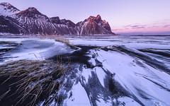 Windswept (carolina_sky) Tags: iceland is vestrahorn hofn atlantic volcanic black sand snow wind grass pentaxk1 pentax1530mm pixelshift skymatthewsphotography sunset alpenglow vatnajökull