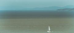 sail away (annapolis_rose) Tags: vancouver pacificocean water sea boat sailboat horizon